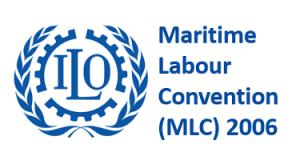 MLC_1-1-640w